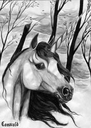 Grey fantasy by Comacold