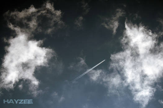 Angels soar