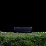 Bench Of Dreams