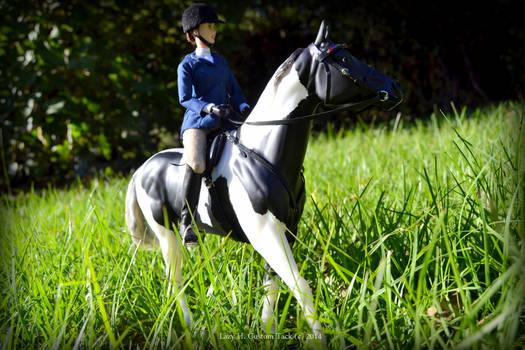 New horse - Travis