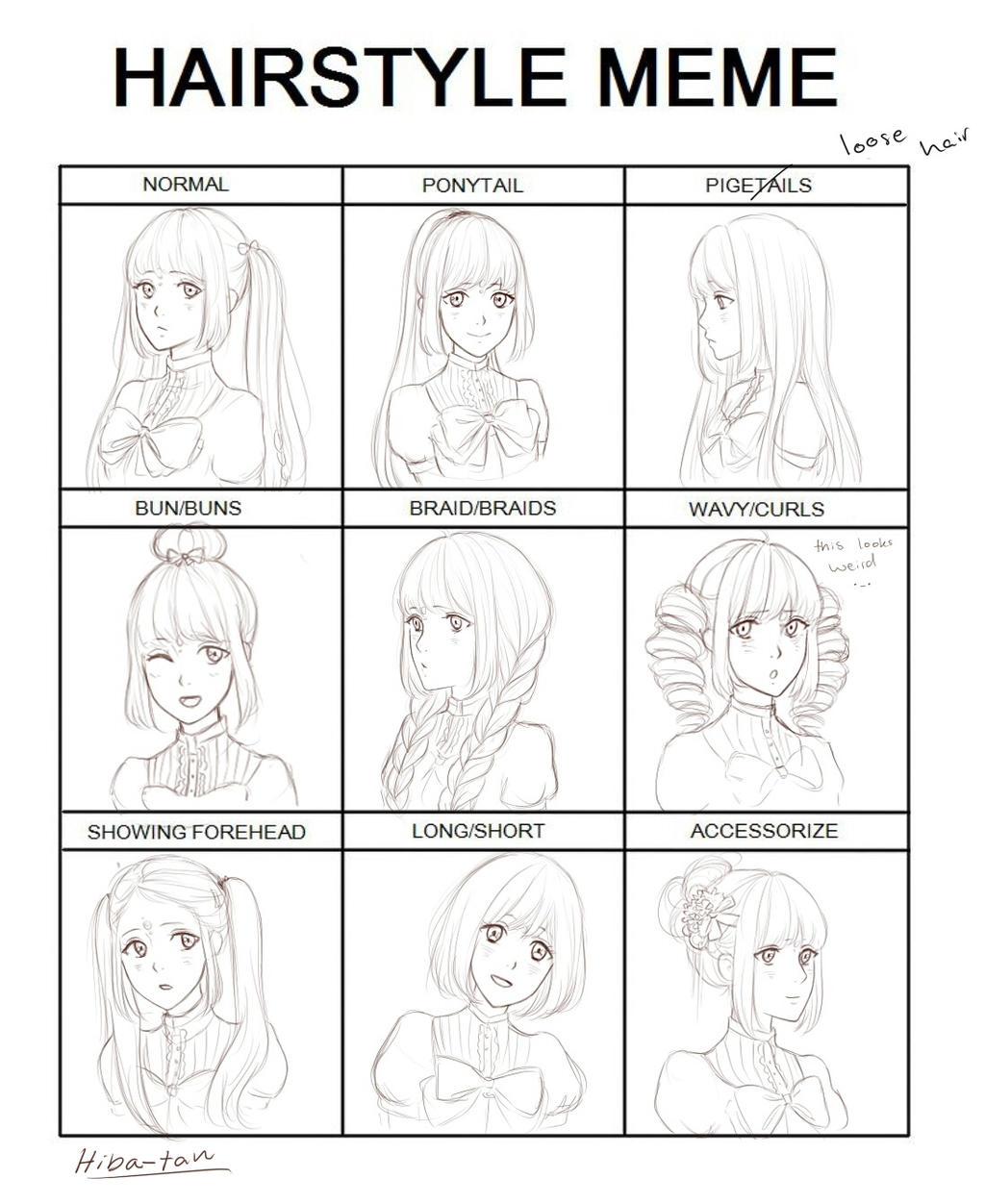 Hairstyle Meme By Hibatan On DeviantArt - Hairstyle drawing meme
