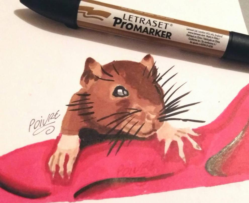 rat draw by moondaneka
