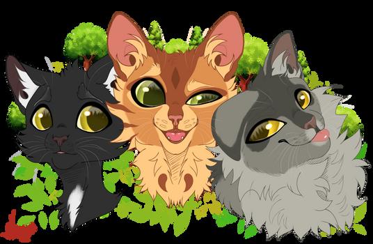 Ravenpaw Firepaw and Greypaw - Warrior Cats