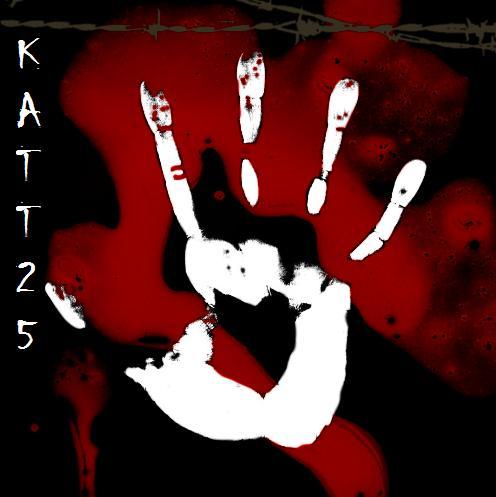 katt-25's Profile Picture