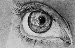 BIC eye by photonline
