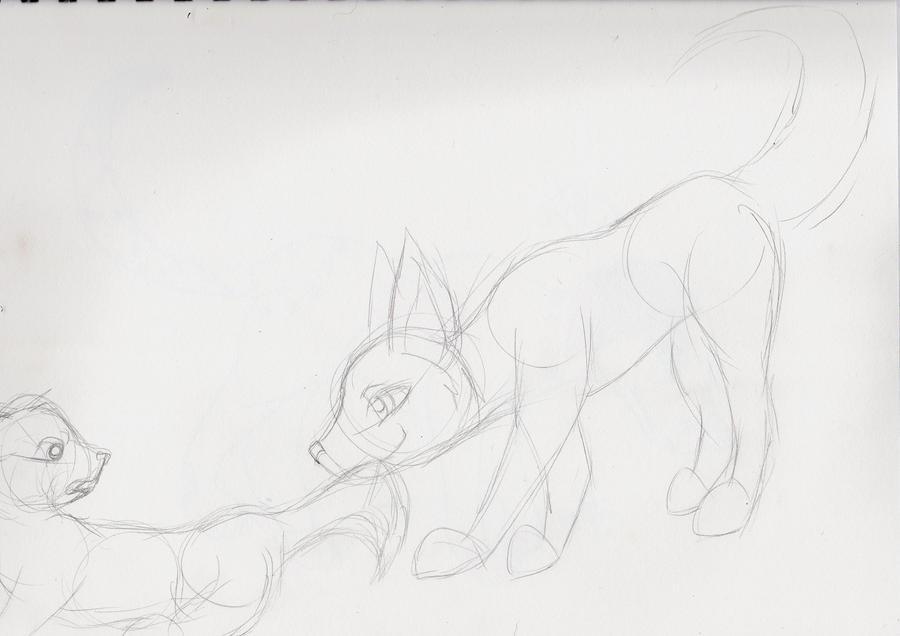 Sketch-Red line needed by NiehHuskey