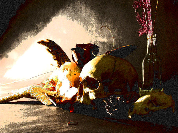 skull still by Ginkoftw