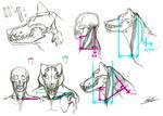 Werewolf anatomy?