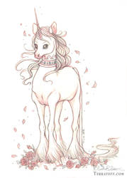 The Adolescent Royal Unicorn