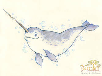 Mermay 2017 #8 The Narwhal by HeatherHitchman