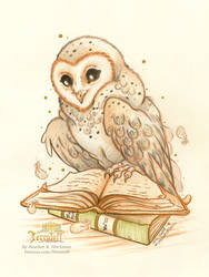 Witta The Owl by HeatherHitchman