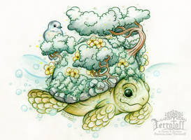 The Land Turtle