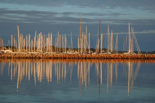 Harbor in the Morning