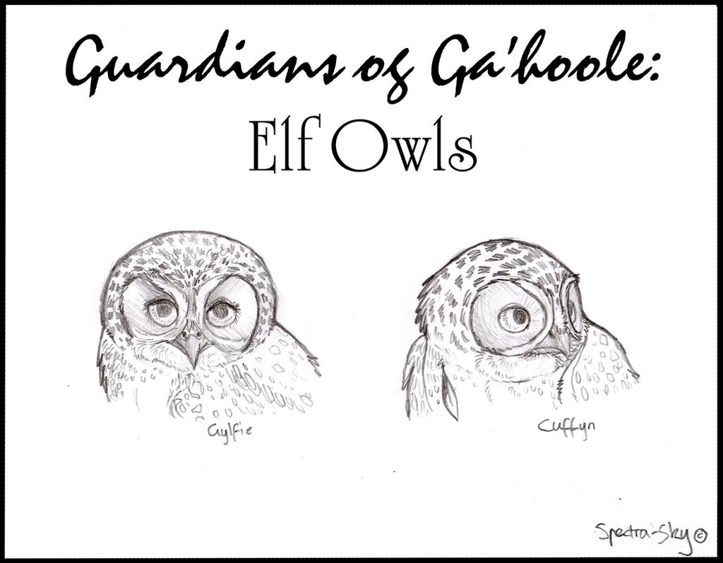 Elf Owls of Ga'hoole by Spectra-Sky