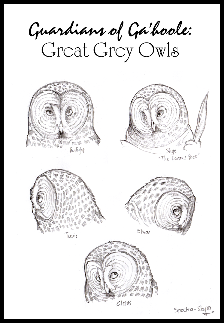 Great Grey Owls of Ga'hoole by Spectra-Sky