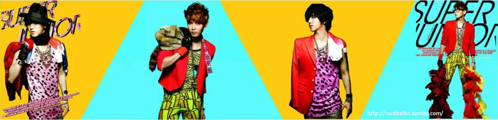 Yesung Ryeowook Mr Simple Tumblr Header by danicalifornia45