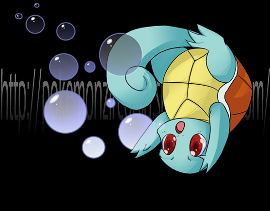Squirtle by Riboo