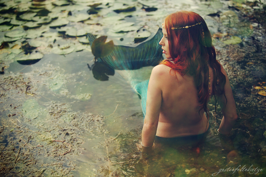 The siren's shore by gestiefeltekatze