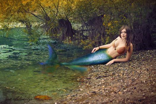 The Autumn mermaid