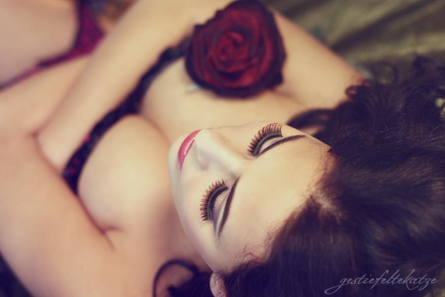 Dark Rose by gestiefeltekatze