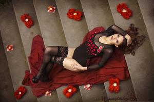 Sensual Red Roses