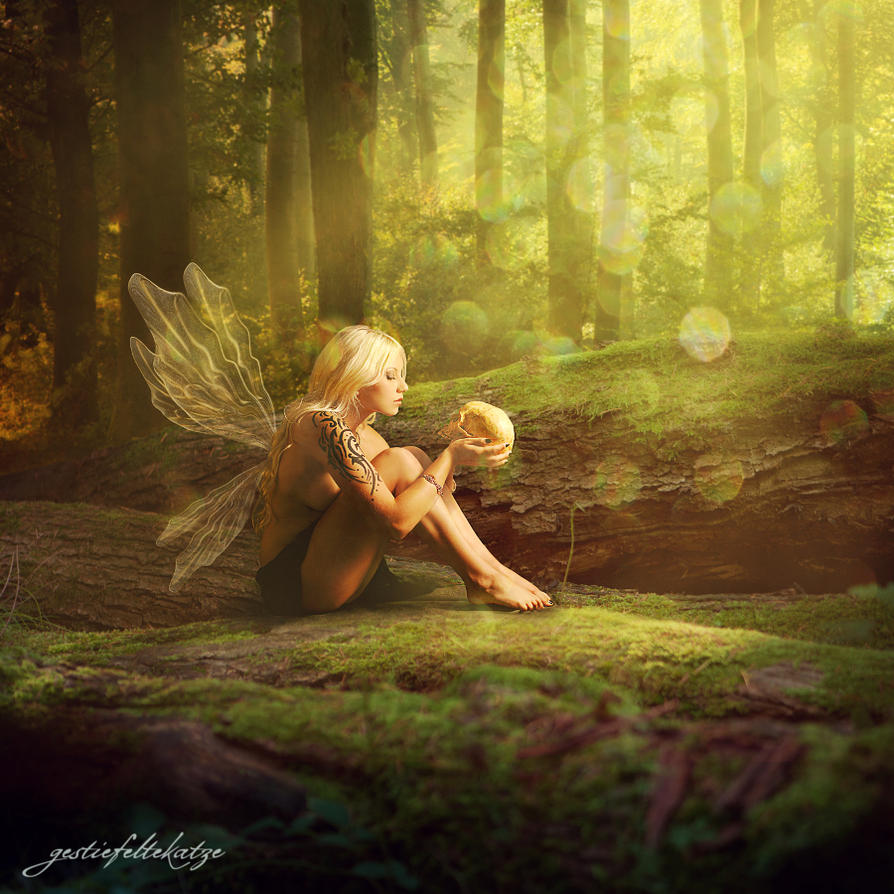 Magical Fairy Pictures 109