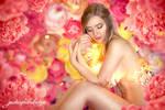 Romantic Blossoms