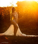 The golden fairy at sunset