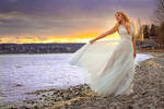 Bridal portrait in the sunset