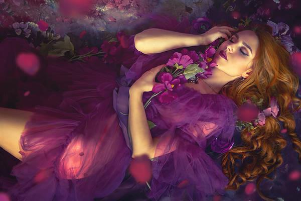 Purple dreaming Kassandra