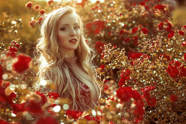 Sophia and the sunset roses
