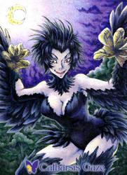 Nachtkrapp-Harpy