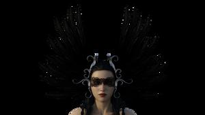 Raven 1a