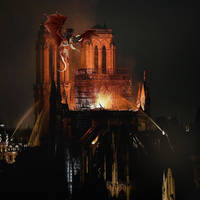 NotreDameDragon by Ravens-Thorn