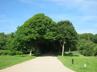 Castle Westhove's park
