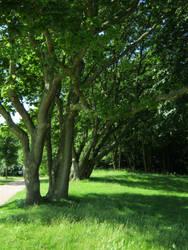 Castle Westhove's park 2