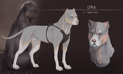 Uma by impalae