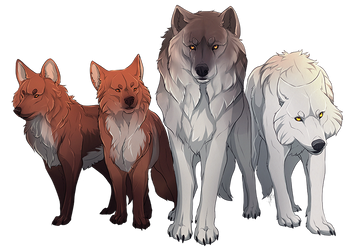 WOLF_GANG. by impalae