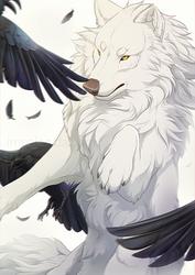 White fur, Black feathers