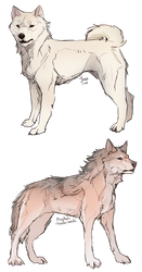 Sketch trades by impalae