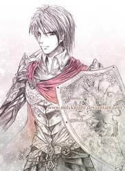 Knight in shiny armour by milyKnight