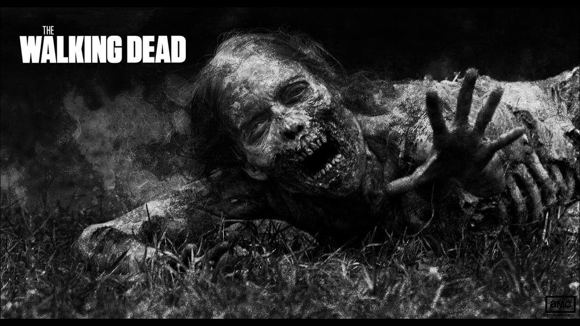 The Walking Dead Wallpaper No2 By Skywalkerdesign