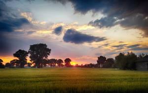 Dzwierszno Male Sunset (HDR) by skywalkerdesign
