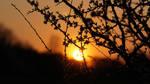Sunset Wolfsburg by skywalkerdesign