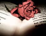 Rose on book.