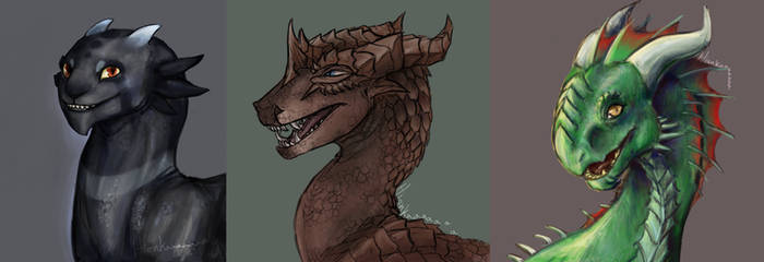 Dragon headshots