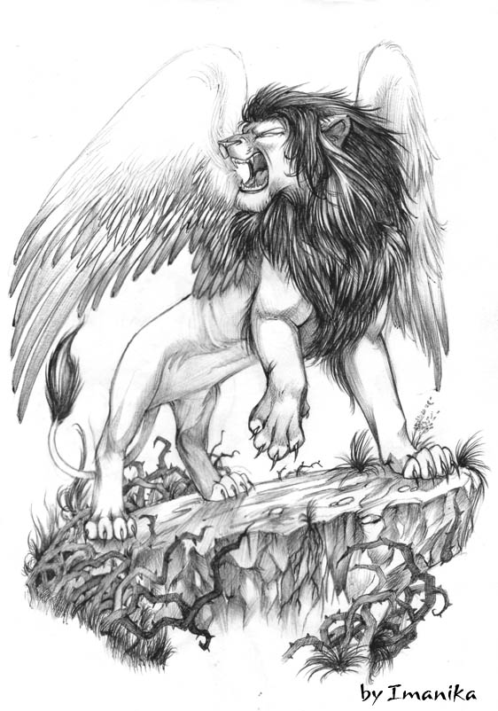 Aslan Resimleri Doevmeleri Lion Doevmesi Leo Tattoos