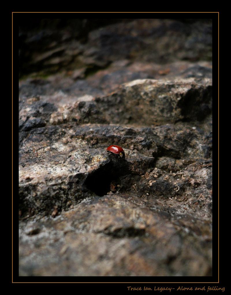 Alone and Falling by Huneazii
