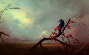 untitled by Ksottam