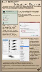Basics- Installing Brushes by para-vine